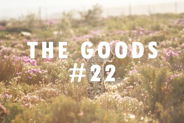 goods22