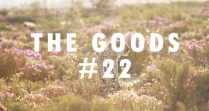 The Goods #22